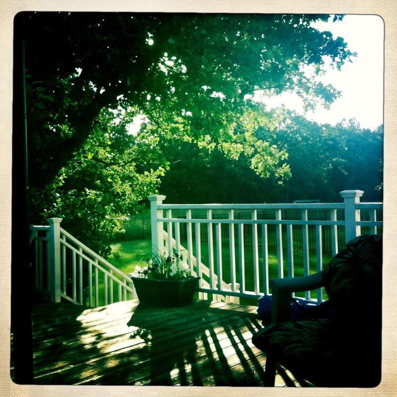 Glorious Morning