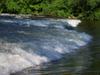 Rapidsvermilion